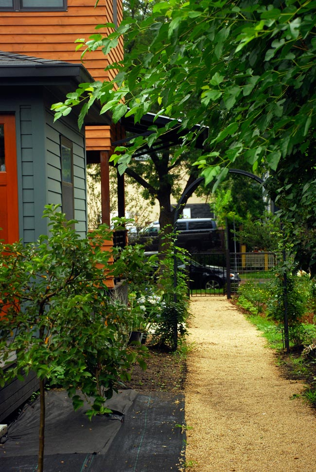McBoal St. Apartments: The garden path